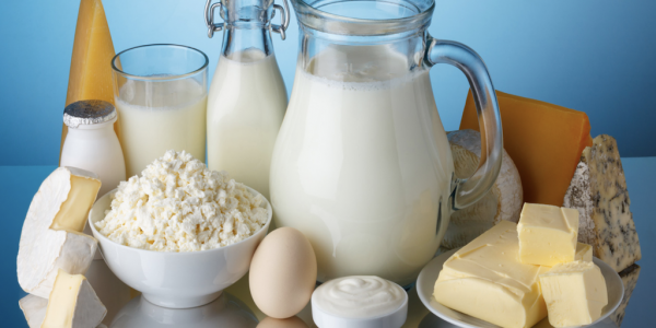 Milk - Is It Good or Bad for Your Weight Loss Plan?